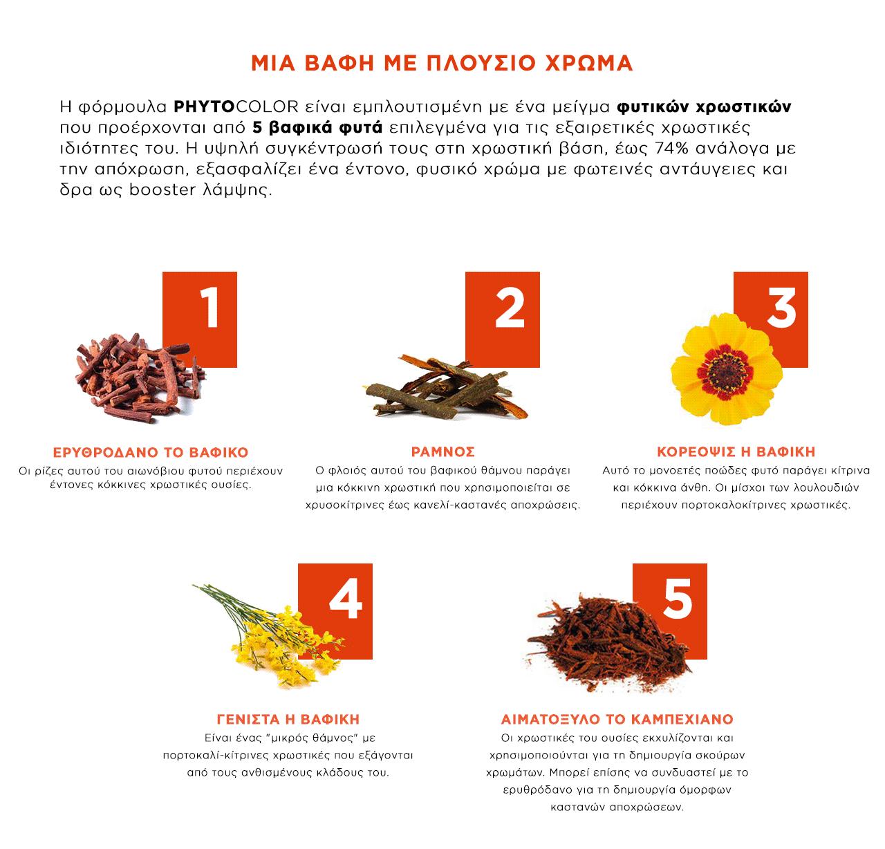 φυτό σεξ εφαρμογή